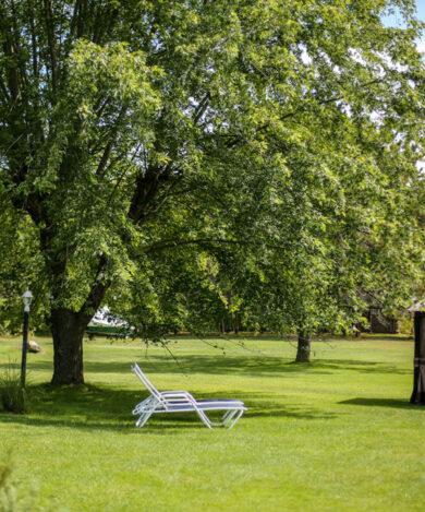 Hamlet-inn-lawn-south-1024x682